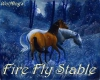 Equestrian center: Fire Fly Stable