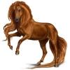 dreamcatcherhorses