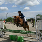 Tornade du Mans - French Trotter (9 years)
