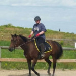 Chelsea - American Paint Horse (13 years)