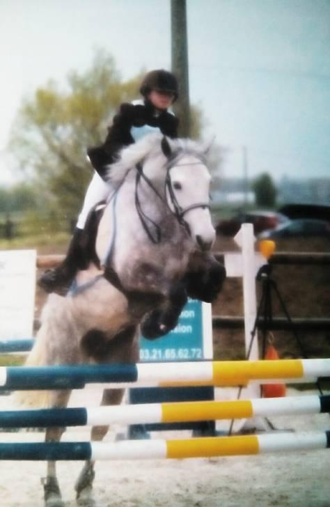 Concours Willow & Odyssée P2 - Connemara Pony (10 years)