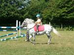 Unser kleines Pony Meidi - (10 years)